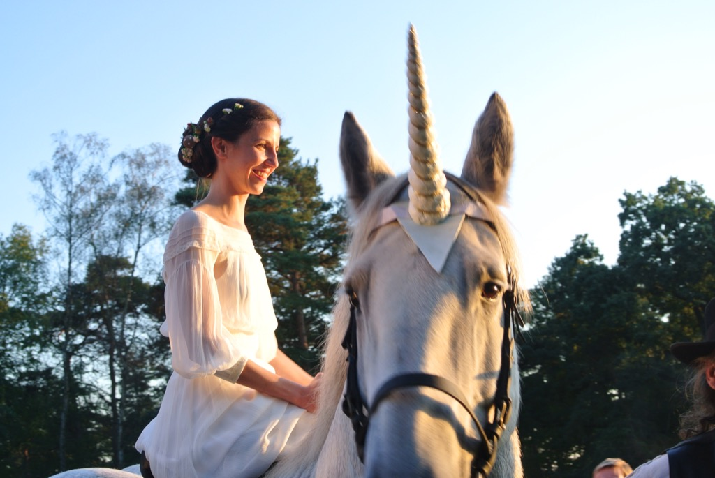 And the bride came riding a unicorn!