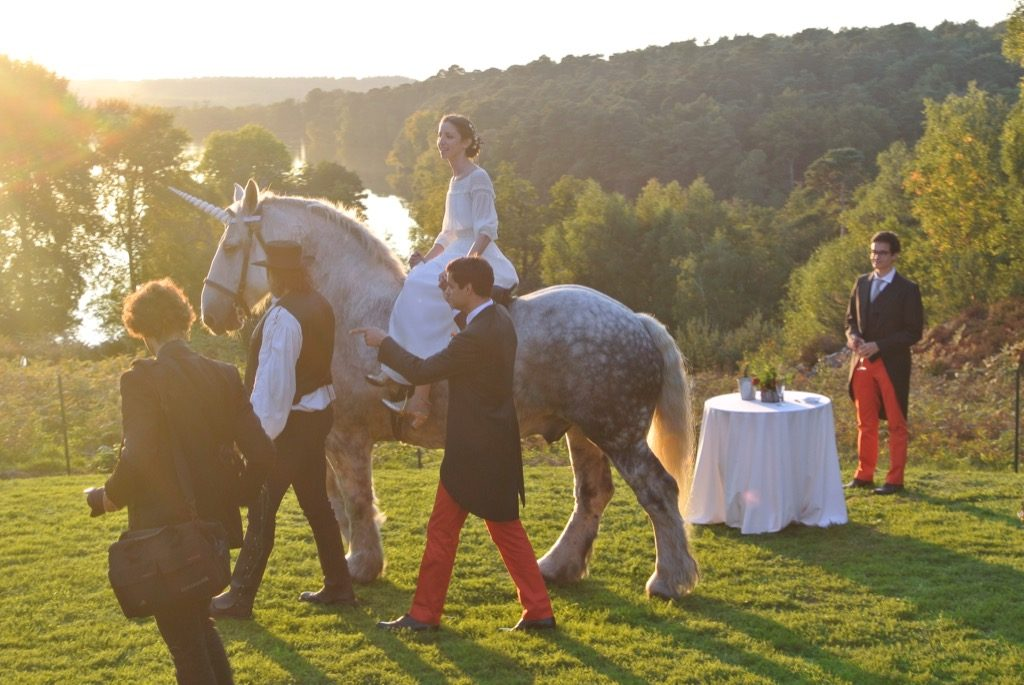 The insolent autumns sun shone on the lake and the groom forgot his fear of horses for one minute…