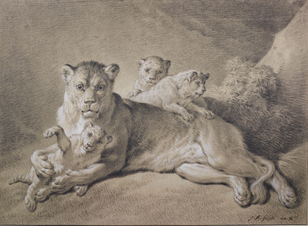 Lionness with her cubs, © Albertina Museum, Vienne