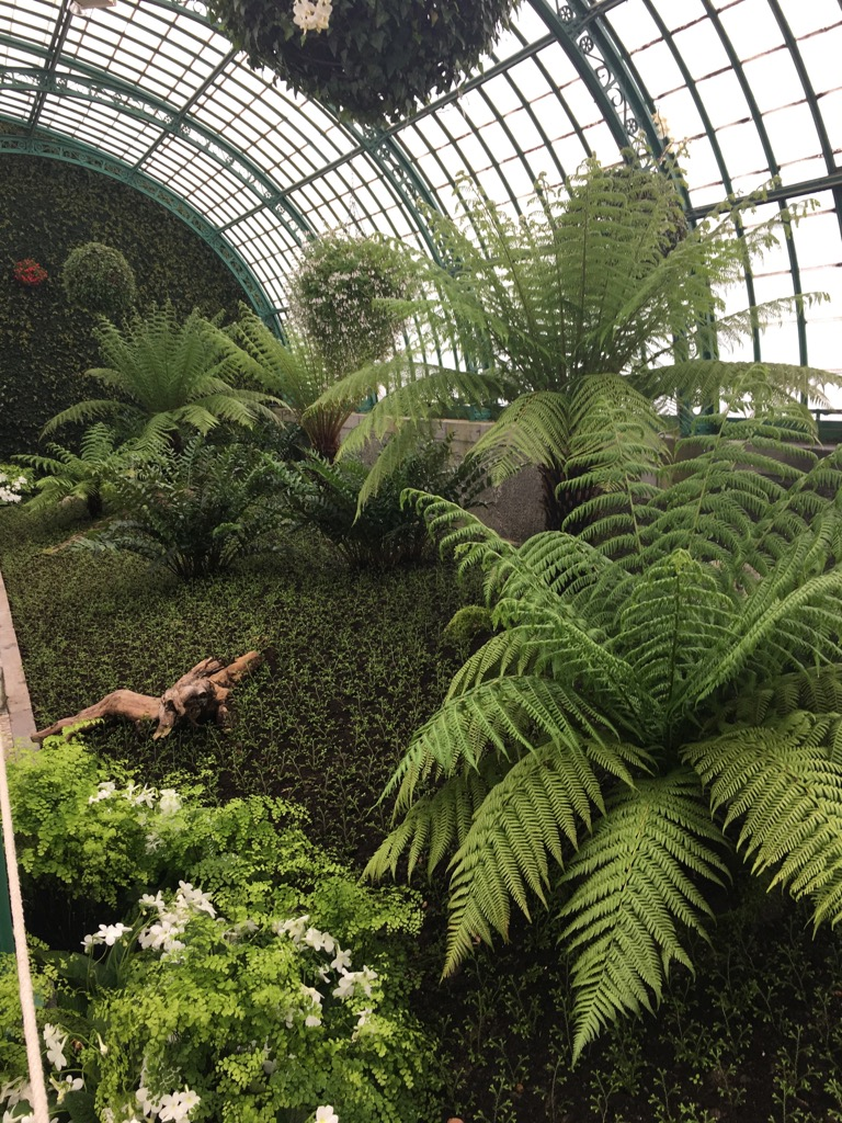 The fern green house is full of different green shades