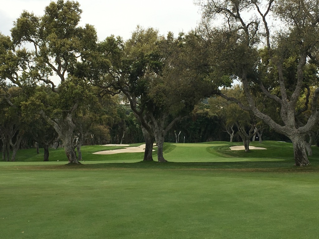 Valderrama has unique Oaks throughout the course