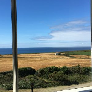A view from my window at Bosistow farm near Land's end, crops and cows by the sea