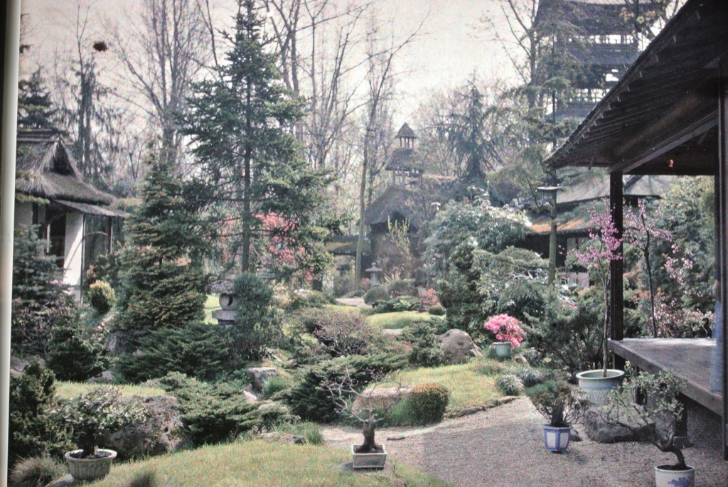 An early photo of the Japanese garden
