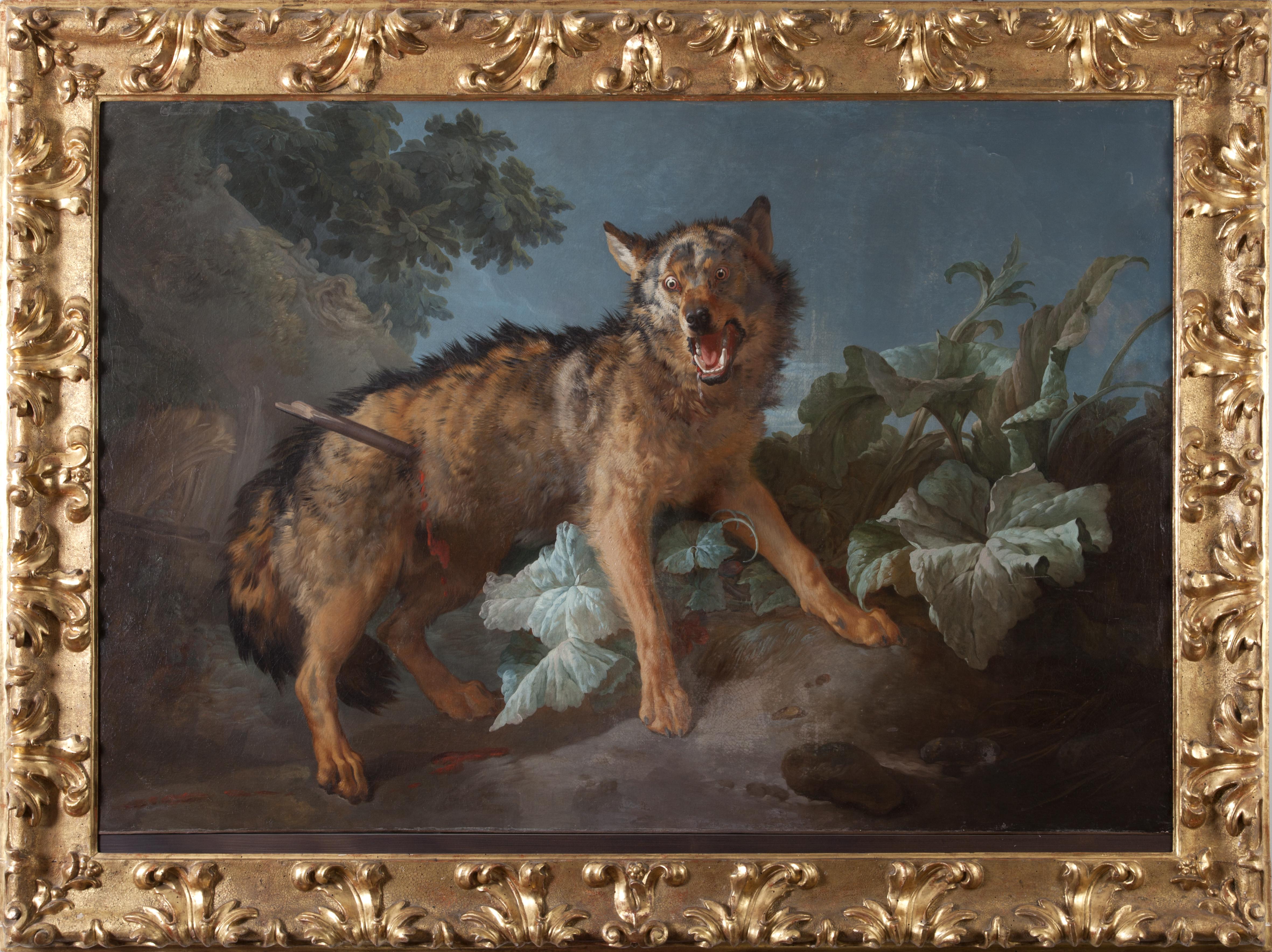 Un loup percé d'une lance, 1771,© David Rase