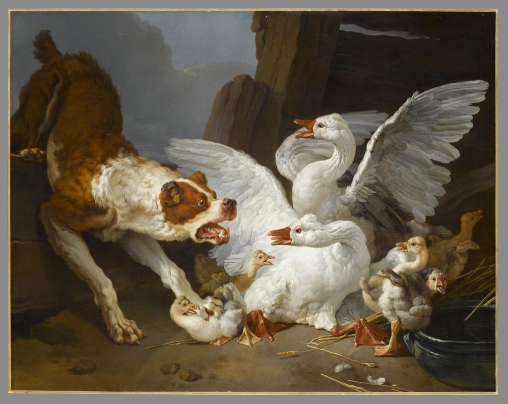 A dog attacks geese, ©musée du Louvre Stéphane Maréchalle.