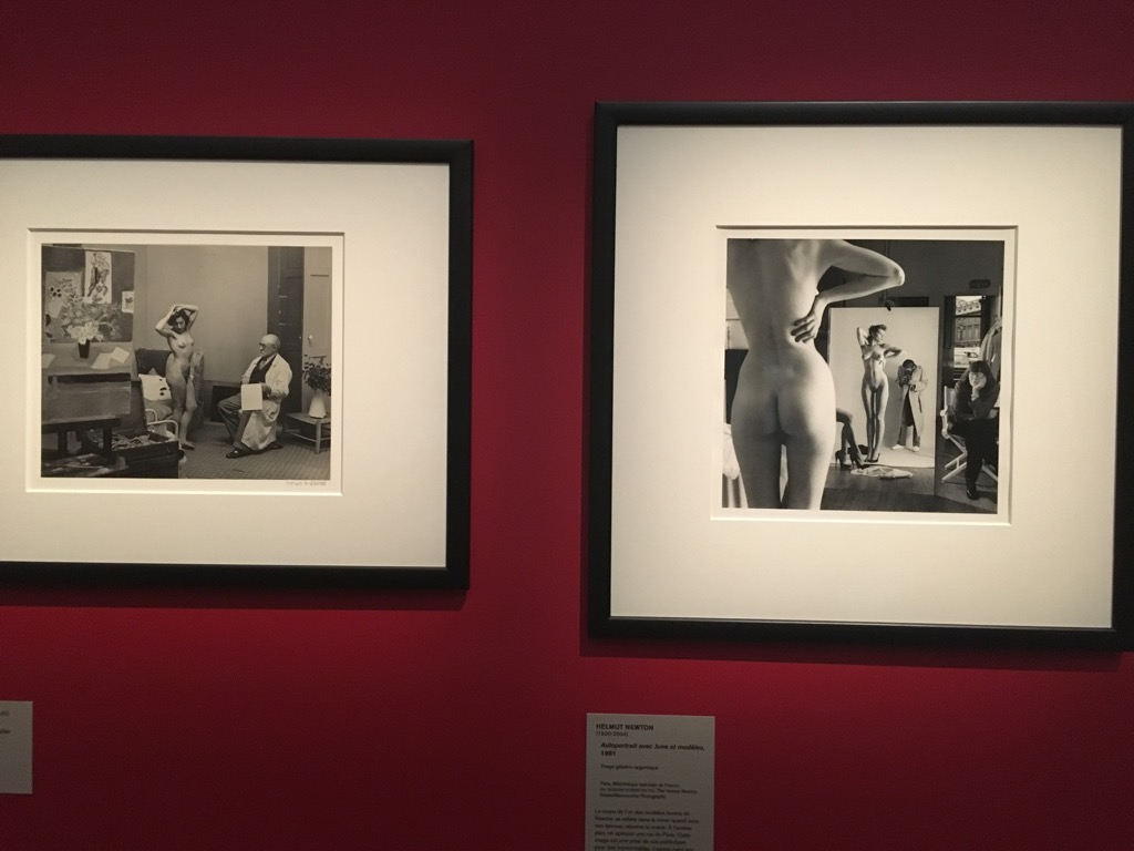 Matisse and Helmut Newton hang side by side
