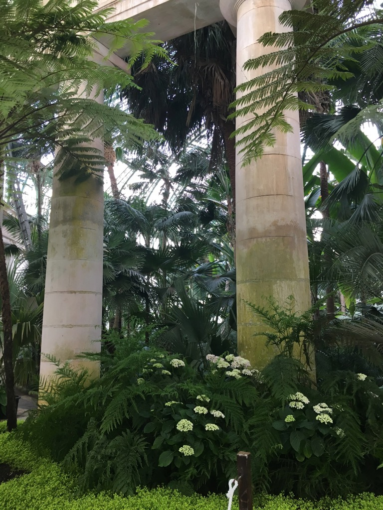 In the Winter garden, parties take place between columns and palm trees