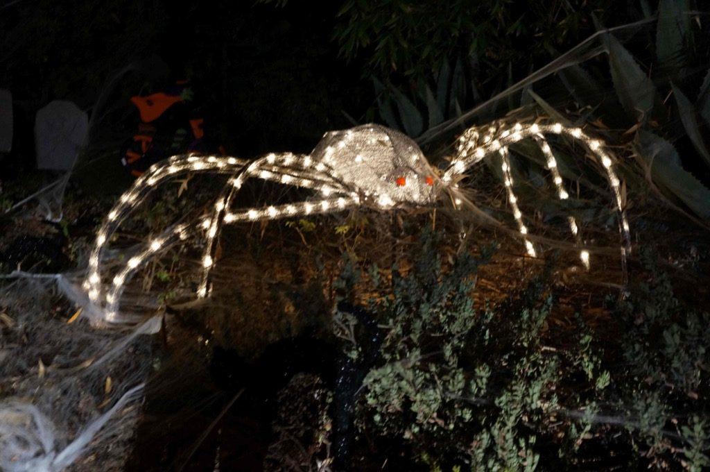 Halloween decoration on Mission Ridge Road, Santa Barbara